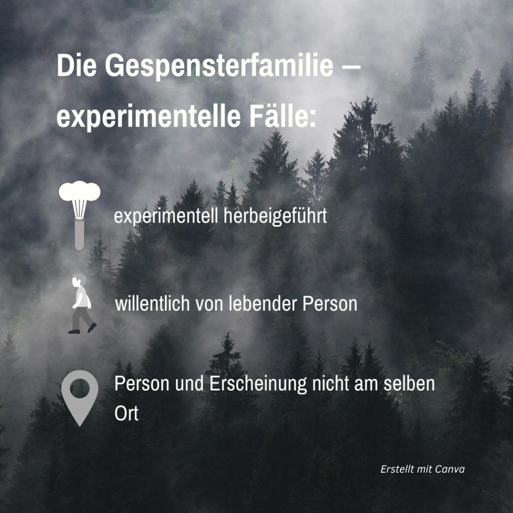 """Hintergrund: Wald im Nebel; Vordergrund: Schriftzug mit Symbolen zu Erscheinungen: """"Experimentelle Fälle"""""""