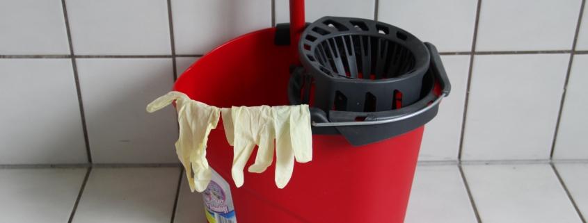 Reinigungswerkzeug, Reinigungskraft