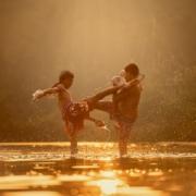Klarträume im Kampfsport