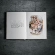 Alice im Wunderland Buch